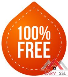 100-FREE-263x300